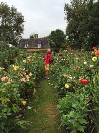 Salignac-Eyvigues, Γαλλία: des fleurs et arbres de toute beauté