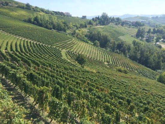 Diano d'Alba, Italien: photo0.jpg
