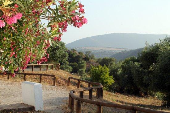 Algar, España: Lindos paisajes