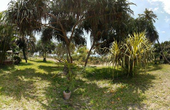 Bagamoyo, Τανζανία: 20160925_114613_large.jpg