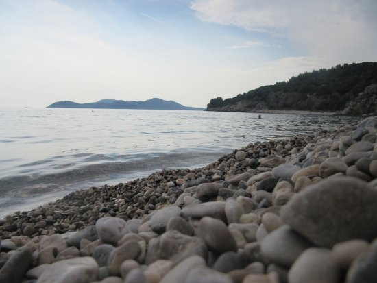 Orasac, Kroatien: The beach (which is pebbles not sand)