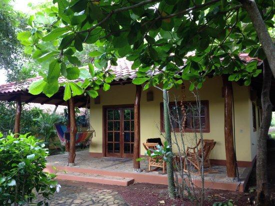 Mango Rosa Nicaragua: photo0.jpg