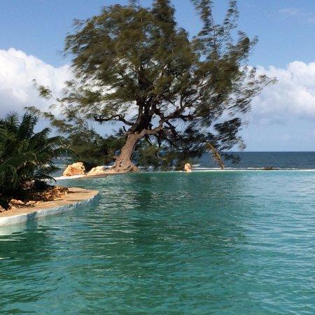 Msambweni, كينيا: the pool is 80 meters long