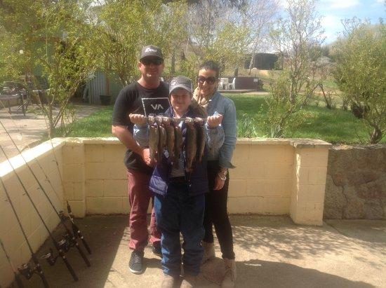 Cooma, Australia: Brilliant family fishing expedition.