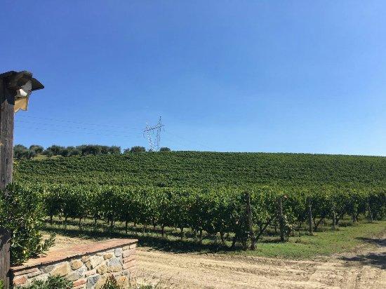 Panicale, Италия: IMG-20160925-WA0020_large.jpg