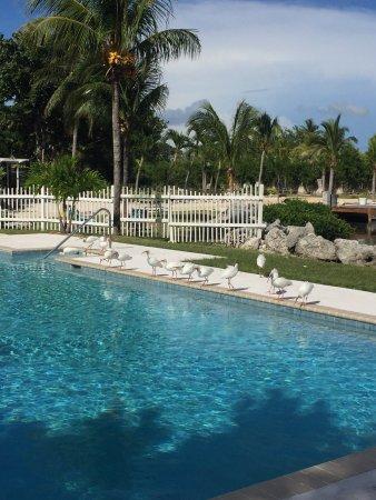 Seascape Motel and Marina : photo0.jpg