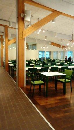 Linköping, สวีเดน: Trevligt grönt