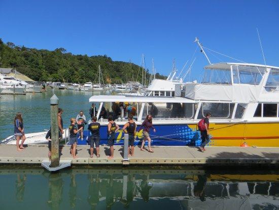 Whangarei, Nueva Zelanda: dive boat