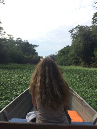 Muyuna Amazon Lodge: Paseo en canoa a través de río yanayacu