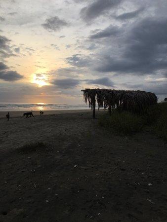 Nosara Beach (Playa Guiones): PraticMwnte todo dia podemos ver essa maravilha!!