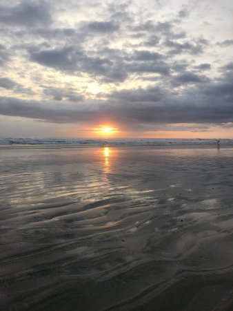 Nosara Beach (Playa Guiones) 사진