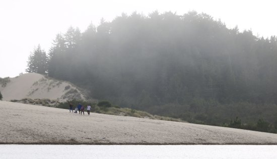 Oregon Dunes National Recreation Area Resmi