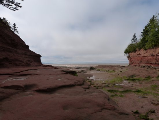 Truro, Canada: Burnt Coat Looking out to the Bay at low tide