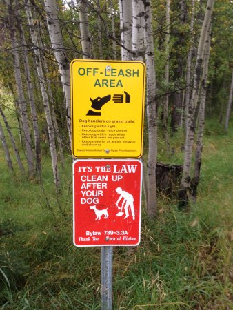 Hinton, Kanada: good signeage- also signs about bears and how to take care if you meet one.