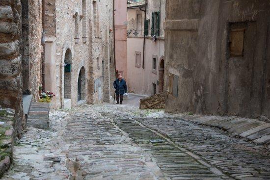 Trevi, إيطاليا: trevi 3