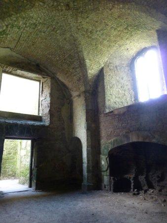 Carlow, Irlanda: Interior ruins