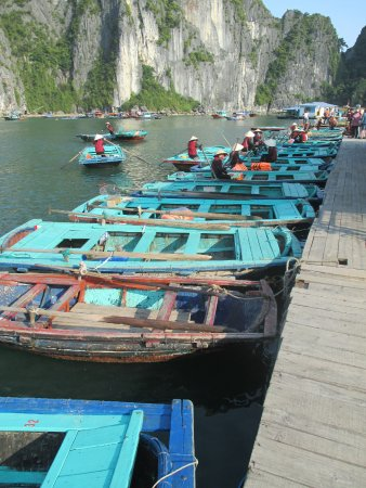 Tuan Chau Island, Vietnam: take your pick the women row with their feet