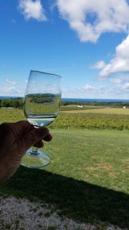 Westfield, estado de Nueva York: wine and a view; perfect on a fall day
