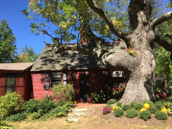 Mason, NH: The house that inspired the drawings of LIttle Red Riding Hood for the Little Golden Books, I be