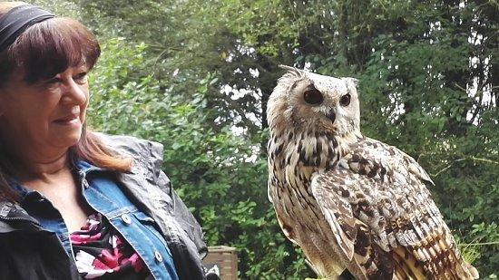 Farnham, UK: Bengal eagle owl handling