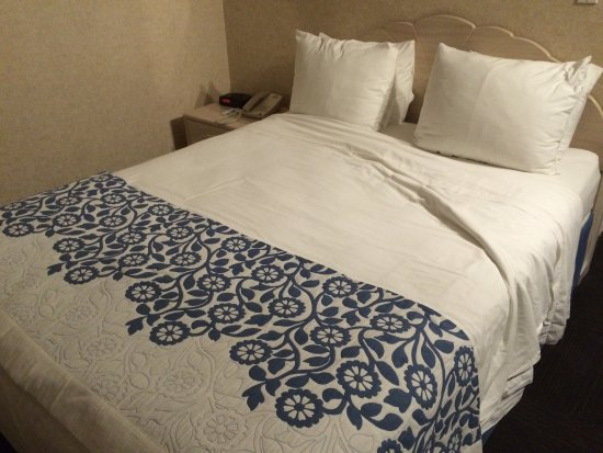 Days Inn Hicksville Long Island: Bed and pillows were the best ever!!!