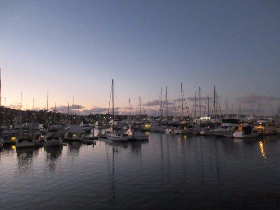BEST WESTERN PLUS Island Palms Hotel & Marina: Gorgeous pathway along harbor