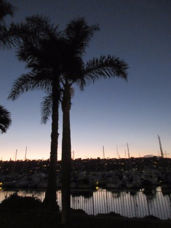 BEST WESTERN PLUS Island Palms Hotel & Marina: Walking path