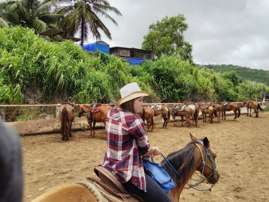 Wailuku, Hawaï: The start of our great horse riding adventure at Mendes Ranch