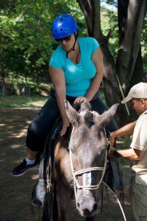 Ла-Крус, Коста-Рика: Good horse!
