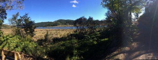 Pauanui-Tairua Trail Weitwinkelansicht mit Bänken, um eine Pause zu machen