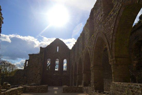 Thomastown, Irlandia: abbey ruins