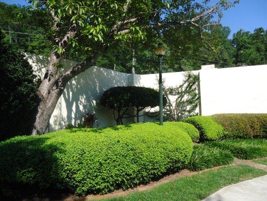 Lake Lure, NC: Hotel gardens