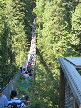 Kuzey Vancouver, Kanada: Capilano bridge