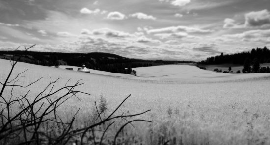 Enterprise, OR: Nearby hay fields