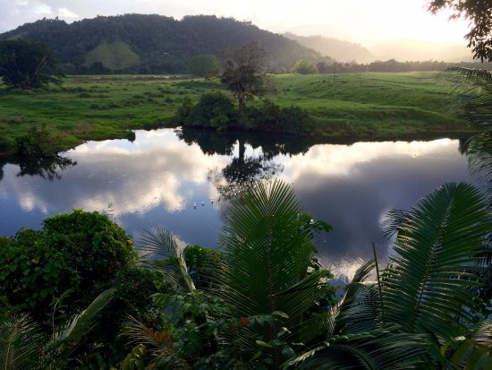 Daintree Village Bed and Breakfast: Spectacular view from the deck