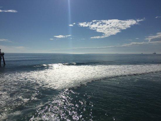 Huntington Beach, CA: Lifers from the pier