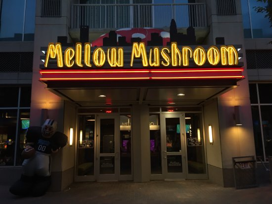 photo regarding Mellow Mushroom Printable Coupons identified as The mellow mushroom places : Great Specials