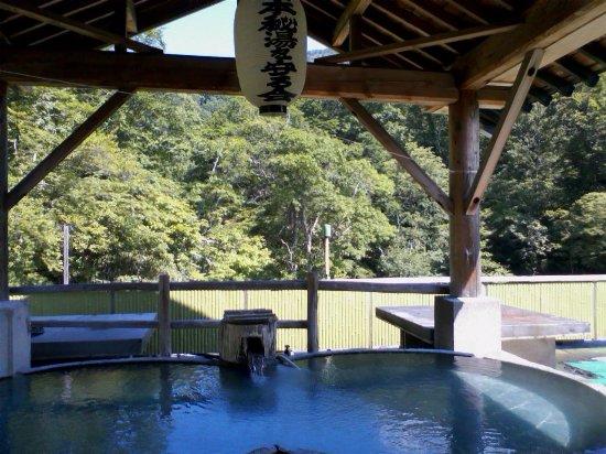 Mitoya Ryokan: 半露天の展望風呂、秘湯を守る会の提灯が誇らしげです。