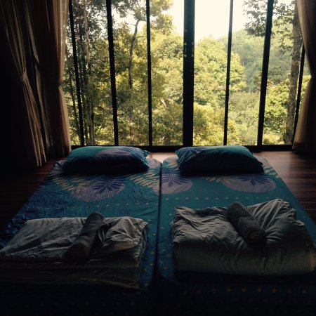 Balik Pulau, มาเลเซีย: View from tatami room
