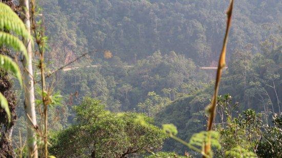Villa Rica, Perù: Bosque de Sho'llet – Área de conservación, Viila Rica Peru / Oxapampa