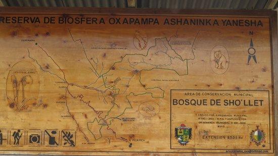 Oxapampa Peru Map.Bosque De Sho Llet Area De Conservacion Viila Rica Peru