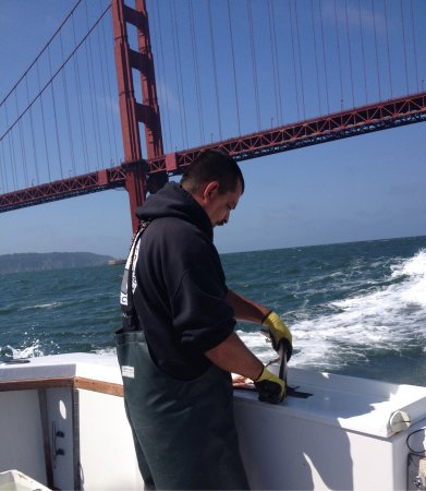 Picture of san francisco fishing charter san for Charter fishing san francisco