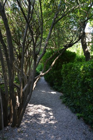 Pubol, Spanyol: Garden
