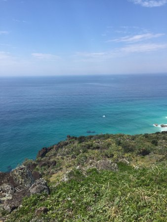 Tewantin, Australien: Double Island Point and whales