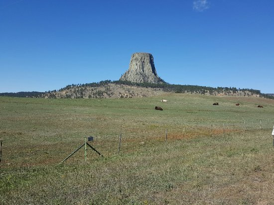 Devils Tower, WY: IMG_20160925_115618_large.jpg
