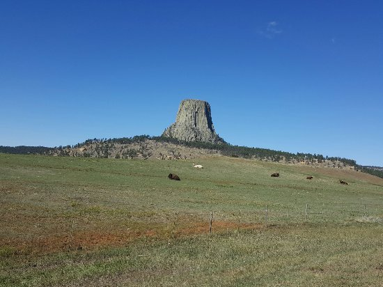 Devils Tower, WY: IMG_20160925_115646_large.jpg