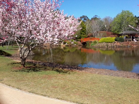 Toowoomba, Australia: Japanese Gardens 2016