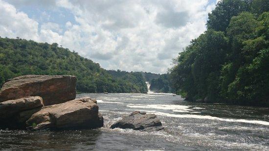 Murchison Falls National Park照片