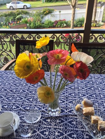 Toowoomba, Australie : Afternoon tea on the front veranda with poppies from our garden