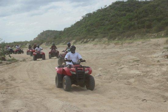 Cactus ATV Tours: Open field...lots of bumps